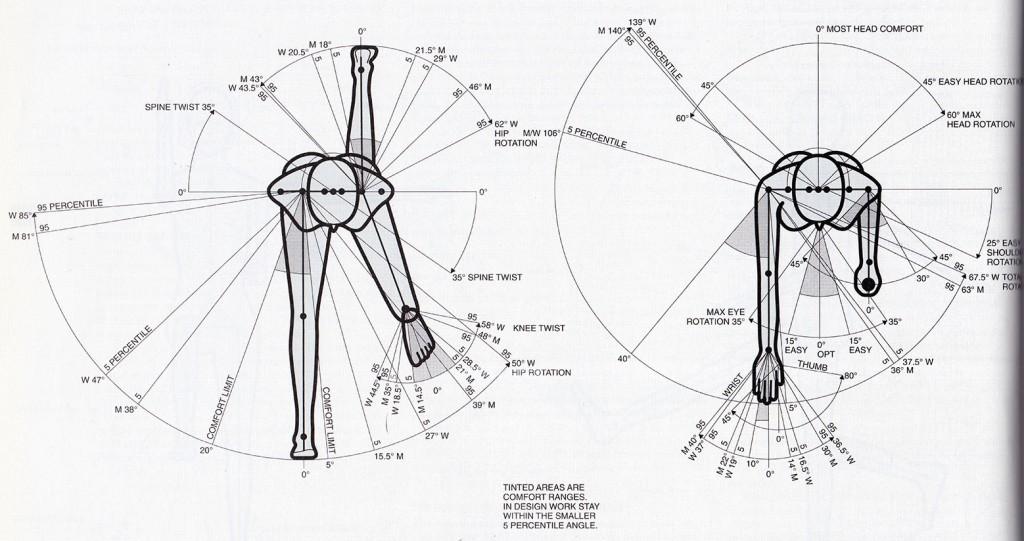 human measure scan top flexion